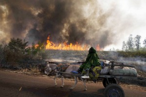 afp_mali_conflict_23Jan13-975x650